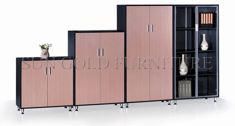 Factory Customize Modern Filing Cabinet. Storage Bookshelf (SZ-FC005)