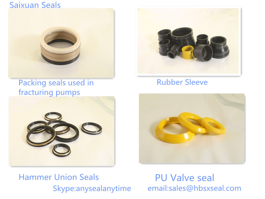 Hammer Union Seals (Lip Seals) for Oilfield