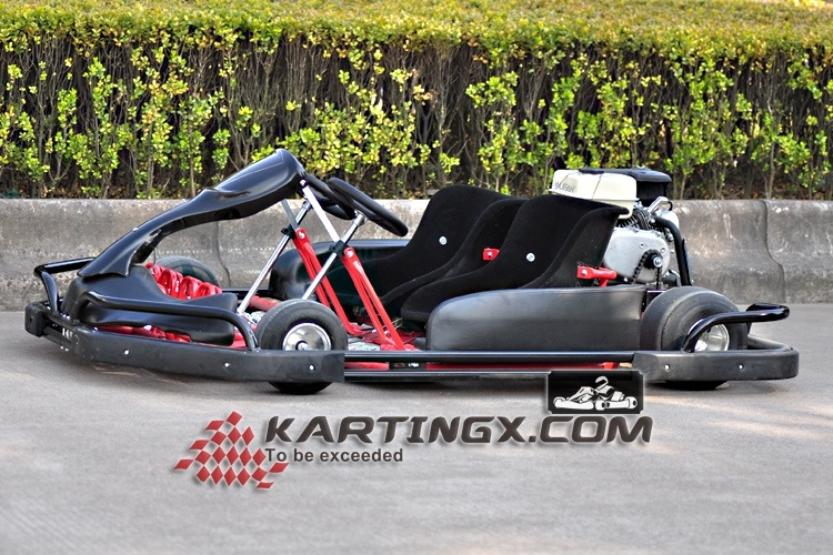2 Seats Go Karting/Buggy/ATV/Quad