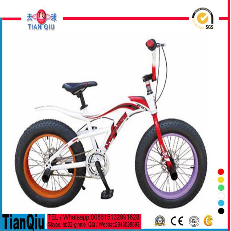 20 Inch Steel Frame Freestyle 20*3.0 Tire Bicycle/BMX Bicycle/Mini Bike