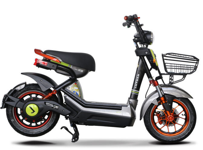 600W Strong Power Electric Scooter with Big Loading Capacity