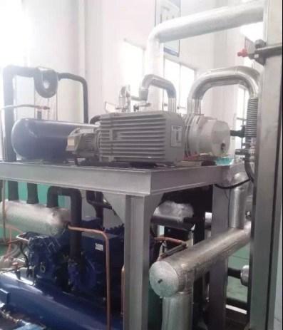 Hokaido Rse Series Environmental Protection Dry Screw Vacuum Pump (RSE80)