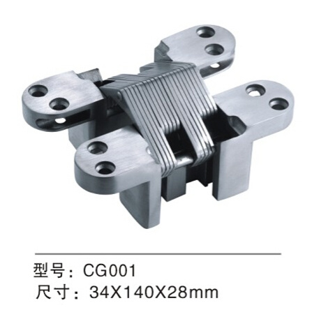 High Quality Stainless Steel Concealed Door Hinge (CG001)