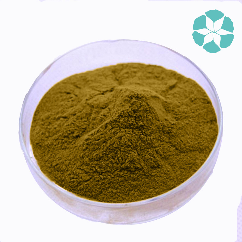 Green Coffee Bean Extract / Coffea Robusta Extract / Chlorogenic Acid
