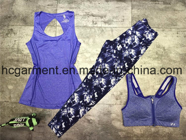 Quickly Dry Sports Suit for Women/Lady, Yoga Wear, Running Wear