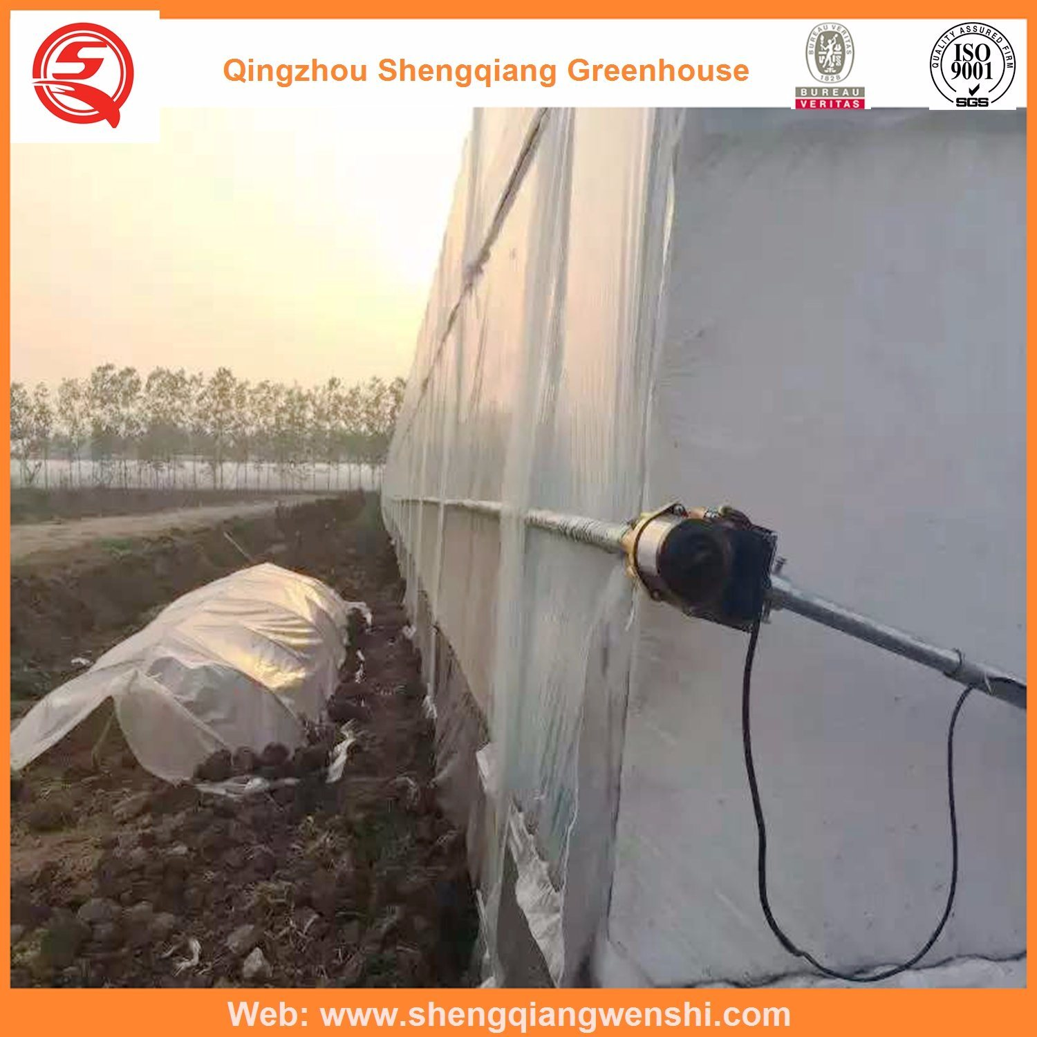 Agriculture Multi Span Film Green House for Vegetables