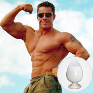 Raw Material Steroid Hormone Powder Testosterone Propionate