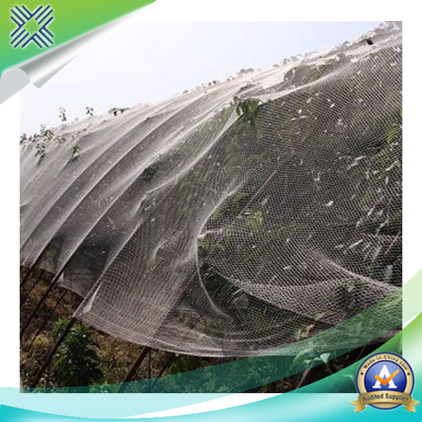 Plastic Anti-Bird Netting