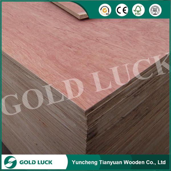 1220*2440mm Poplar Commercial Okoume Plywood