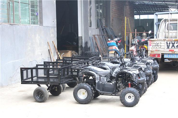 4 Wheelers Beach Vehicles