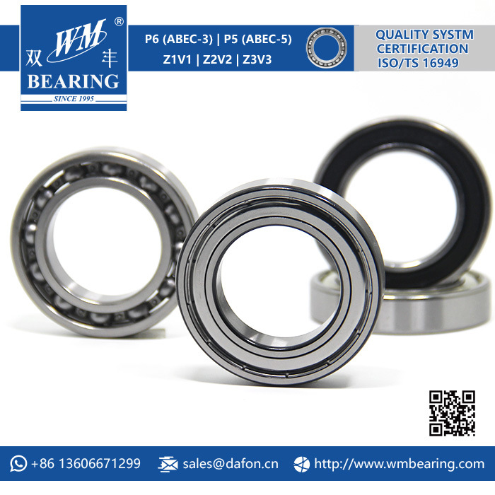 High Precision P6 Motorcycle Parts Deep Groove Ball Bearing (6009)