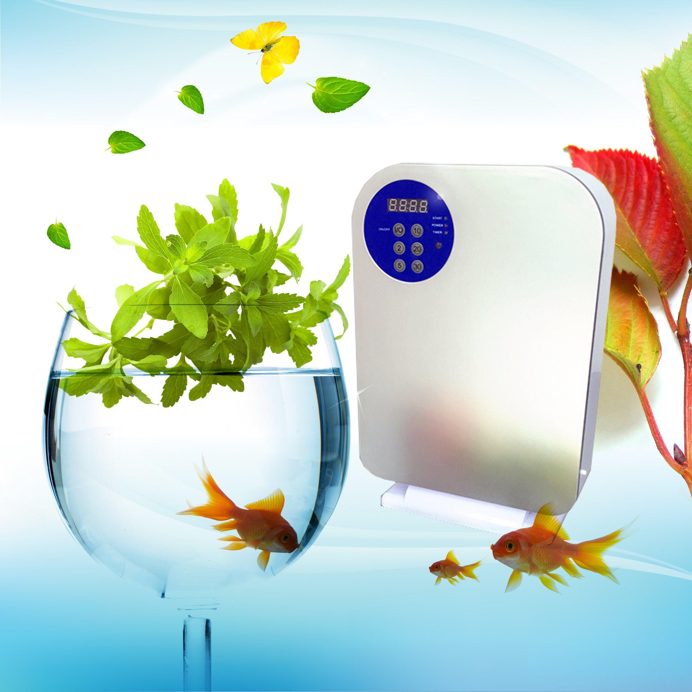 400mg/H Domestic Ozone Machine Ozone Generator Ozone Fruit and Vegetable Washer HK-A3