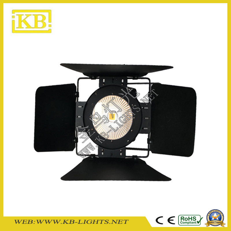 100W or 200W COB LED PAR Light (warm white)