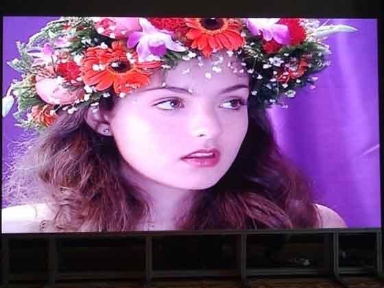 Outdoor/Indoor Rental Leddisplay Screen for Advertising (500*500mm/500*1000mm) Panel