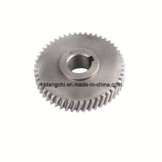 Transmission Parts Steel Bevel Worm Wheel Gear