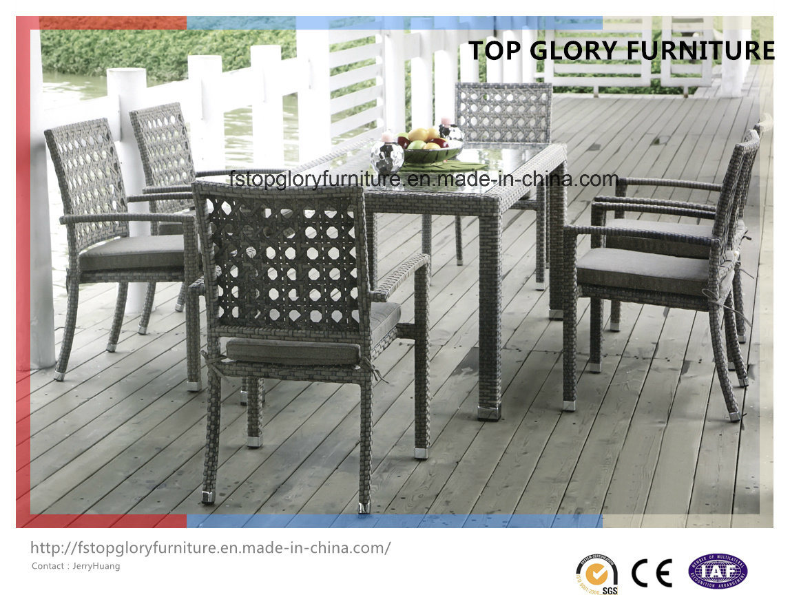 Outdoor Furniture with Table and Chairs (TG-1619)