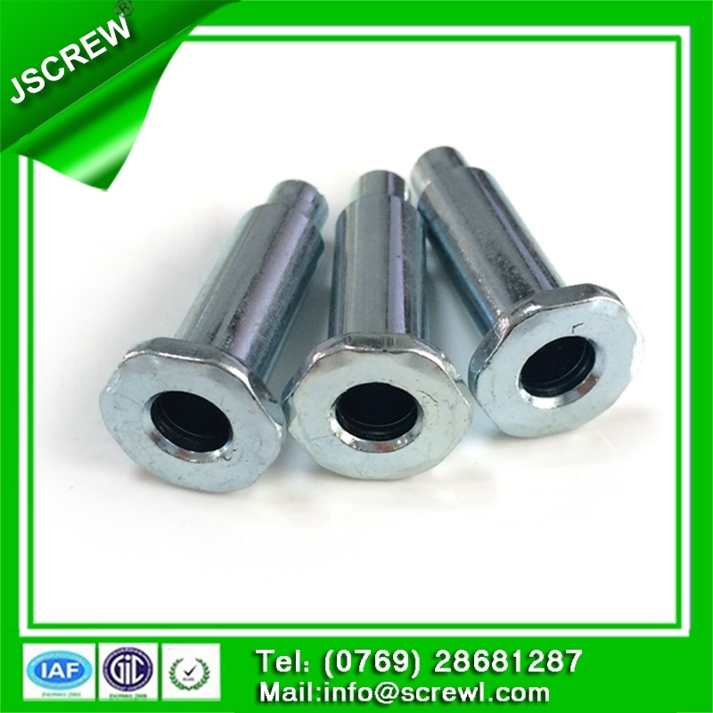 Fastener Socket Head Stainless Steel Rivet M6*40