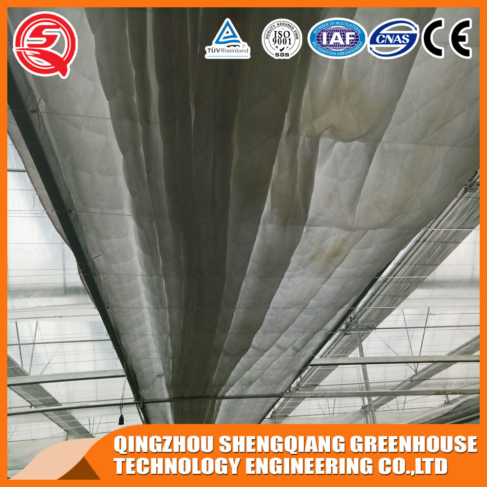 Agriculture Plastic Greenhouse for Vegetables/Flowers
