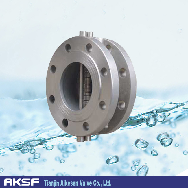Cast Iron Dual Plate Check Valve Wafer Type Ss Disc