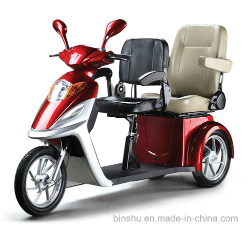 3 Wheel Double Seat Electric Mobility Handicapped Scooter with 500W