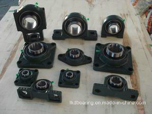 Ss Pillow Block Bearing UCFL205-217