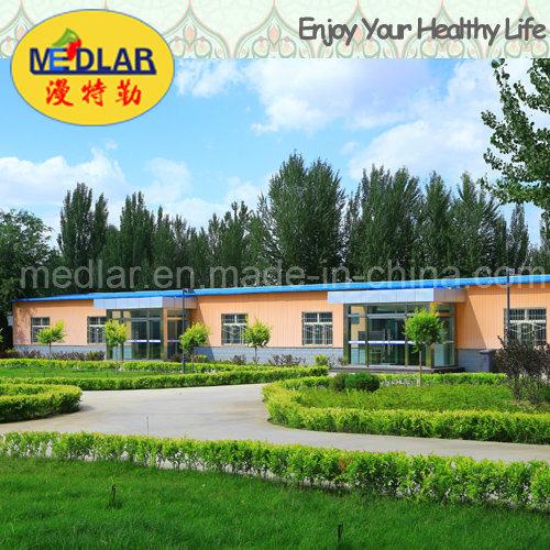 Medlar Lycium Barbarum Chinense Goji Dried Fruit