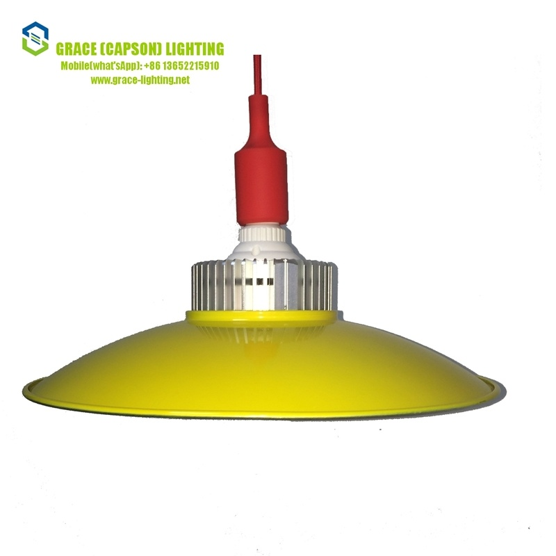 High Quality 30W LED Supermarket Pendant Lamp (CS-GKD-006-30W)