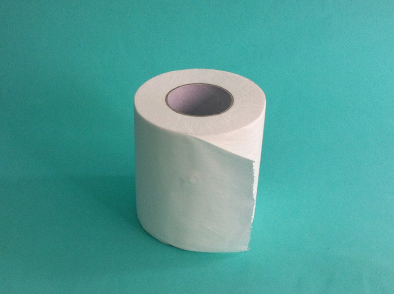 Toilet Tissue Paper Bt500r