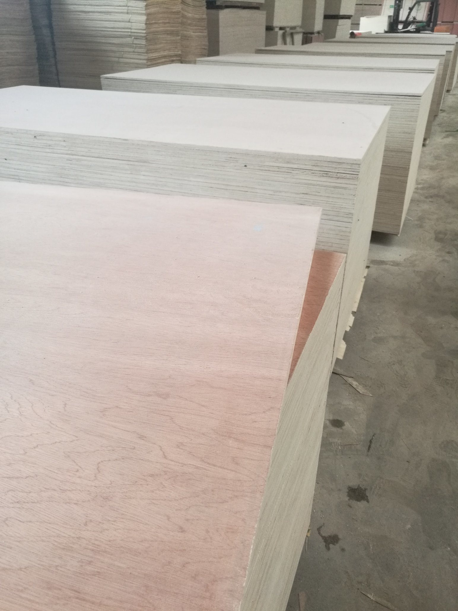5-21mm Bintangor Face Poplar Core Plywood
