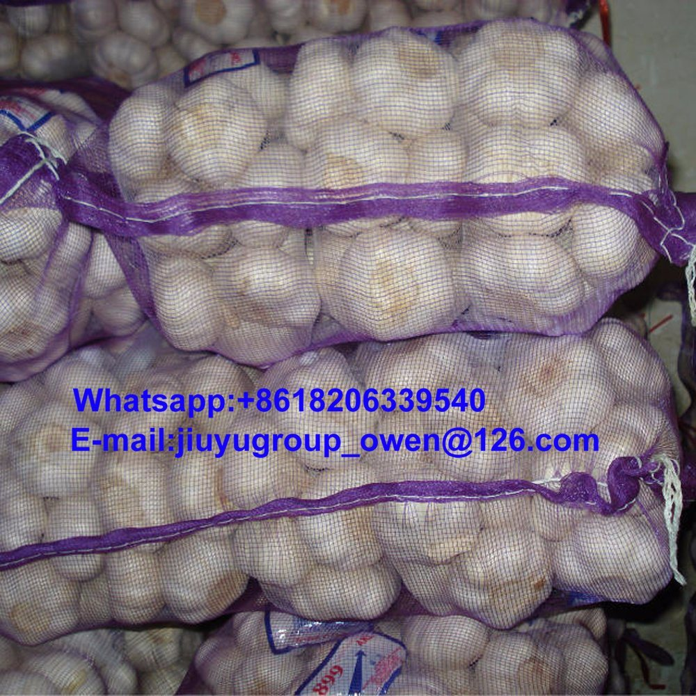Food Grade Pure White Garlic