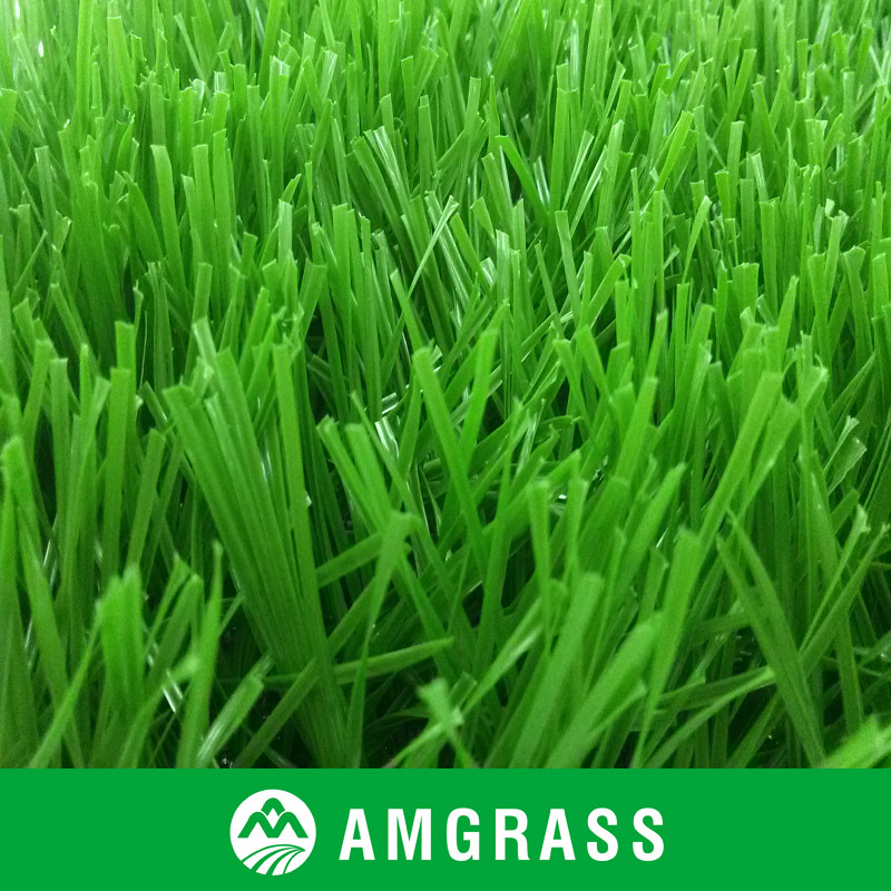 Soccer Football Artificial Grass (ASS-50D)