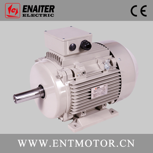 Ie2 High Efficiency 3-Phase Electrical Motor