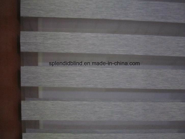 Roller Windows Blinds Fashion Windows Blinds