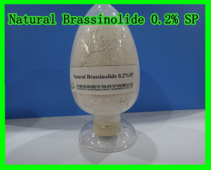 Natural Brassinolide 0.2% SP