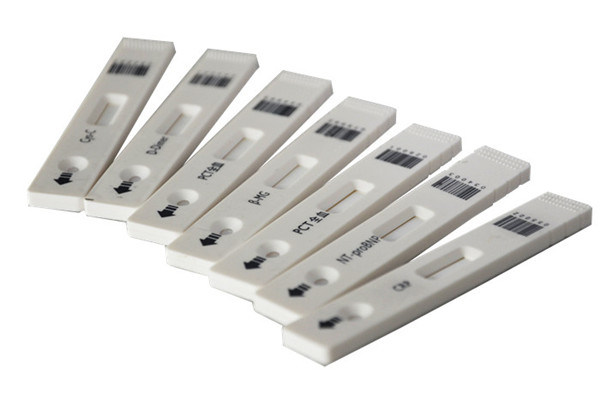 Rapid Clinical Fluorescence Immunoassay Test Kits for RF