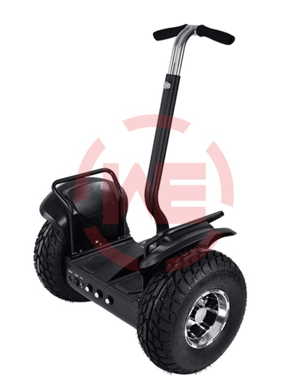 Electric Vehicle with Handle