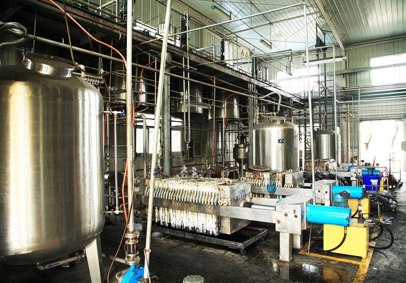 GMP Factory Supply Sophora Extract 98% Oxymatrine
