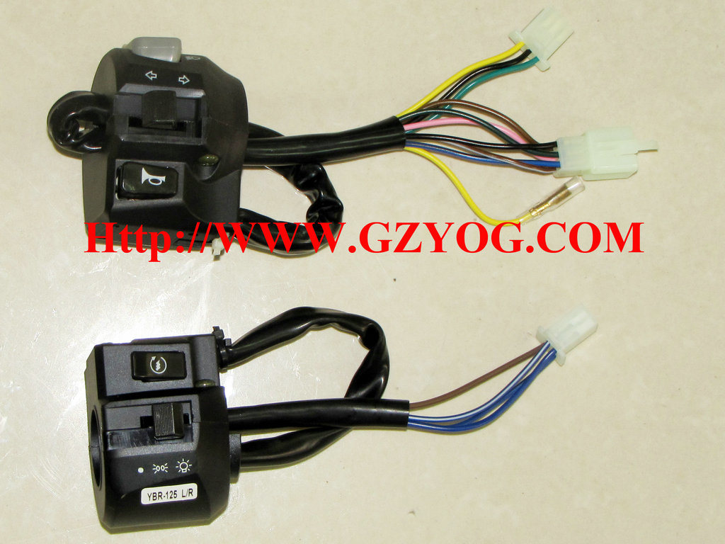 Yog Motorcycle Spare Parts Handle Switch Assy Bajaj Boxer CT 100 Indian Tvs Models Cg125 Cgl125 Ybr125 YAMAHA Fz16 Suzuki Gn125