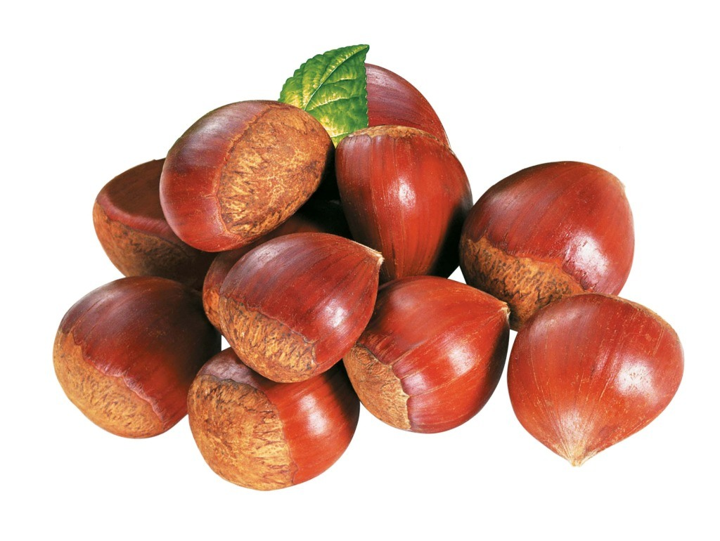 Chestnuts 2017 Fresh Chinese Chestnuts with High Exporting Quality