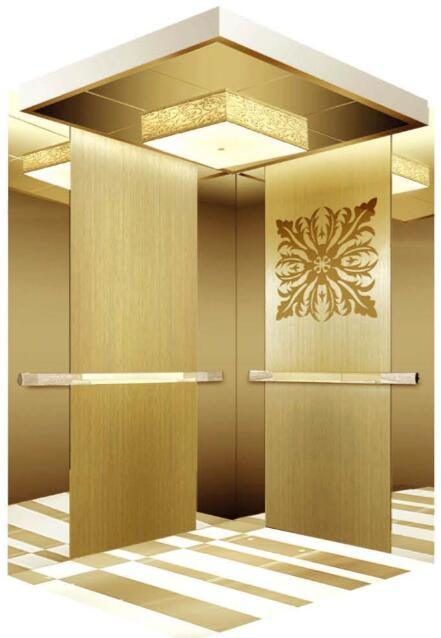 AC Vvvf Gearless Drive Passenger Elevator Without Machine Room (RLS-254)