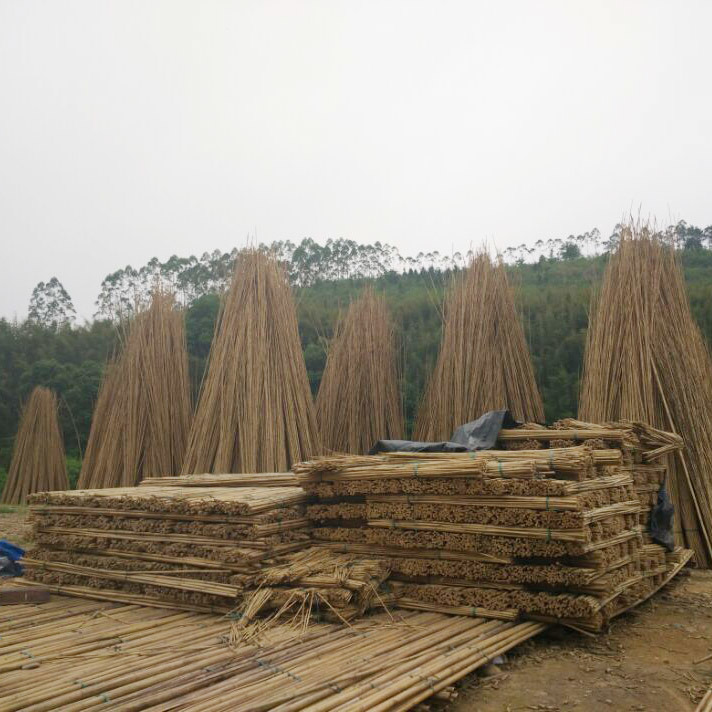 Natural Bamboo Cane & Bamboo Products