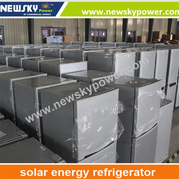 Bcd176L DC 12V 24V Solar Refrigerator