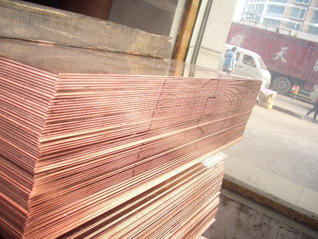 High Purity 99.9% Copper Sheet (C11000 C10100 C10200 C1100)