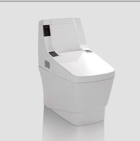 New Design Bathroom Toilet (DS982)