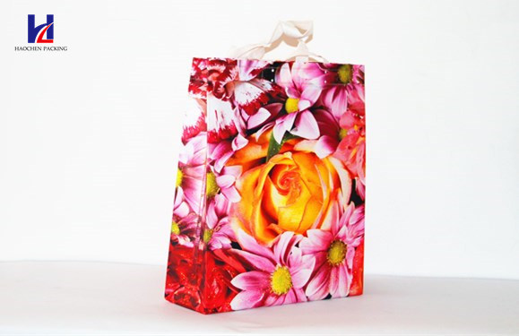 One of The Most Popular Handheld Shopping Bag