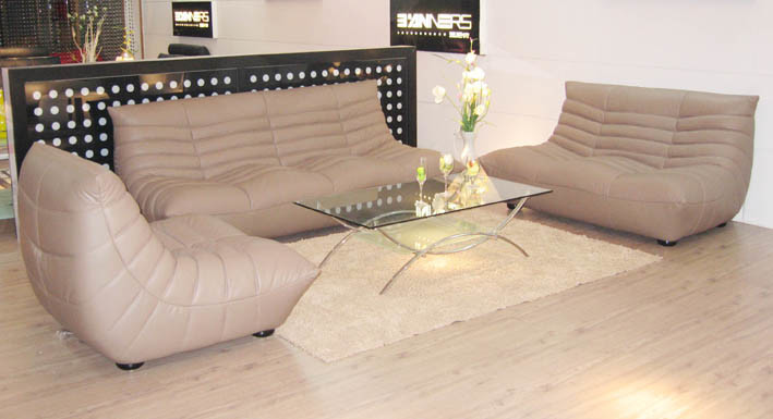 Living Room Genuine Leather Sofa (B-240B)
