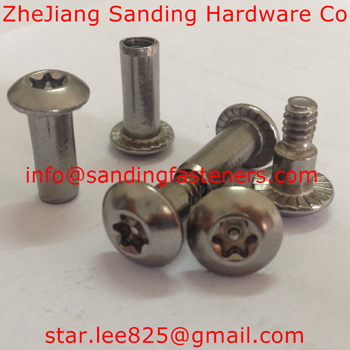 Stainless Steel 304 Anti-Theft Torx Drive Set Screws