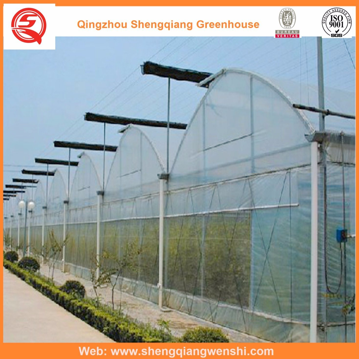 Agriculture Plastic Film Green House for Planting