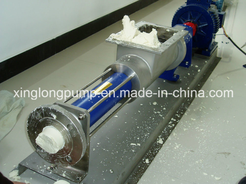 Xinglong Screw Pump for Food Processing