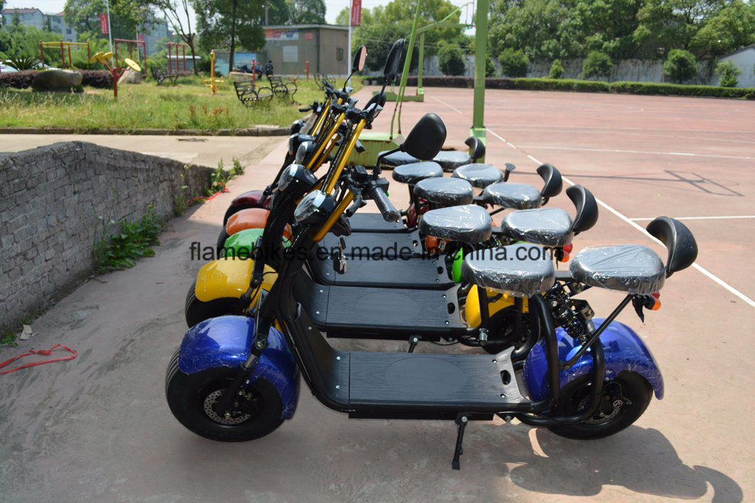 Electric Motorcycle with 1000W Motor 60V/12ah